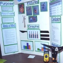 February, 2011 - Roche Colorado Science Fair